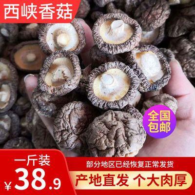 西峡农家自产新货干货香菇250克特产包邮产地直销绿色纯天然食品