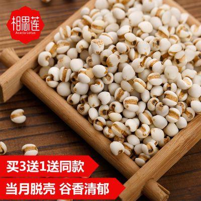 买4送1相思莲小薏米500g贵州特产薏米仁薏仁米五谷杂粮粗粮薏苡仁