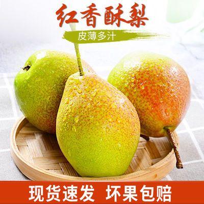 香梨红香酥梨当季新鲜水果梨子整箱批发皇冠梨雪梨黄花梨苹果梨