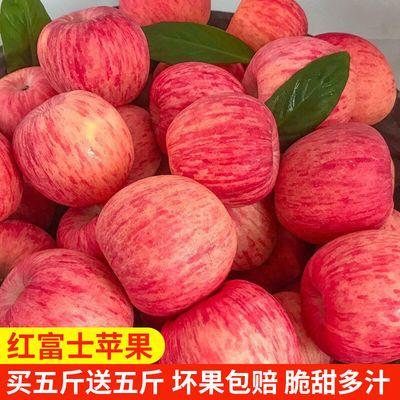 陕西洛川红富士苹果冰糖心新鲜水果整箱批发3/5/10斤不打蜡带皮吃