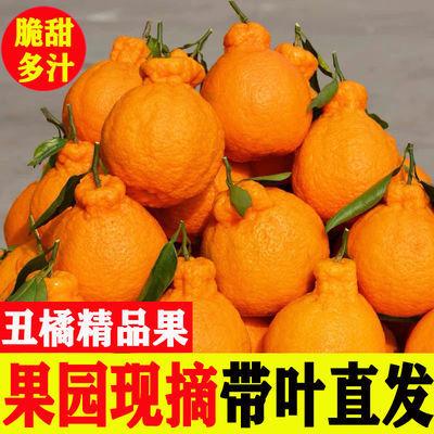 四川丑橘不知火新鲜当季孕妇水果现摘甜丑八怪柑桔子2/5/10斤批发