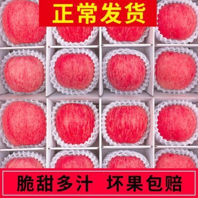 陕西红富士苹果脆甜多汁5/10斤包邮丑苹果孕妇新鲜水果非冰糖心