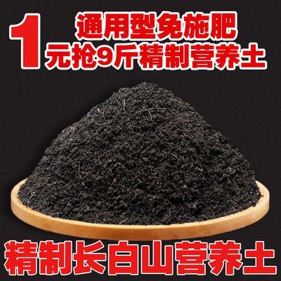 营养土绿萝多肉君子兰通用种花养花种菜专用花土壤松针土花肥花卉