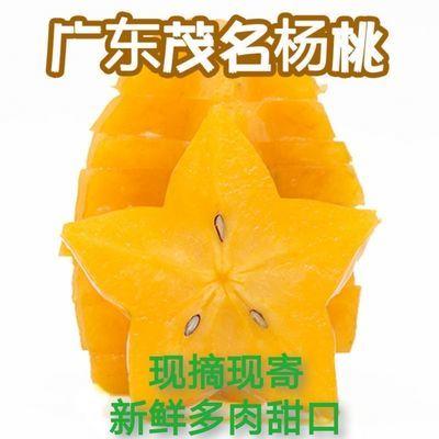 78552/现摘现寄新鲜多肉汁甜广东茂名甜杨桃老少皆宜水果送酸梅粉