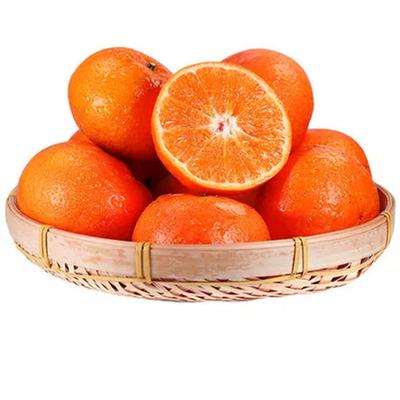 广西武鸣沃柑新鲜水果当季整箱蜜桔砂糖橘皇帝柑橘子橘子贵妃柑桔