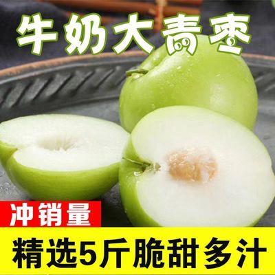 蜜丝枣水果新鲜大青枣水果贵妃枣牛奶枣脆枣新鲜水果