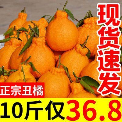 四川不知火丑橘10斤装丑桔丑柑丑八怪橘子新鲜水果桔子2/5/9斤