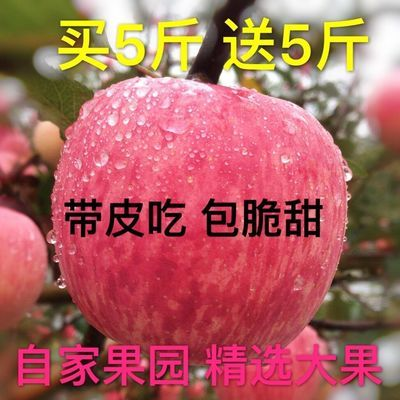 精品陕西冰糖心丑苹果脆红富士新鲜当季水果整箱批发5/10斤孕妇吃