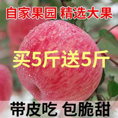 陕西脆甜红富士苹果冰糖心新鲜水果整箱批发10斤不打蜡带皮吃5斤