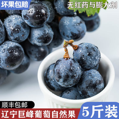 巨峰葡萄新鲜孕妇水果5斤装甜美多汁非福安浦江巨峰冷链顺丰包邮