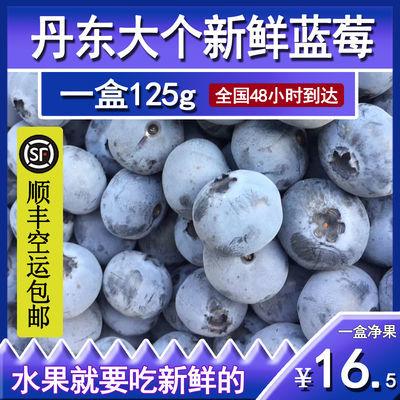 现采现摘进口大个好吃新鲜蓝莓顺丰包邮应季绿色健康护眼水果