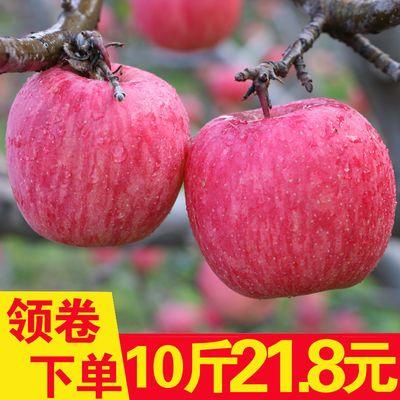 现货苹果水果新鲜红富士水果现摘苹果脆甜丑脆苹果大果10斤包邮