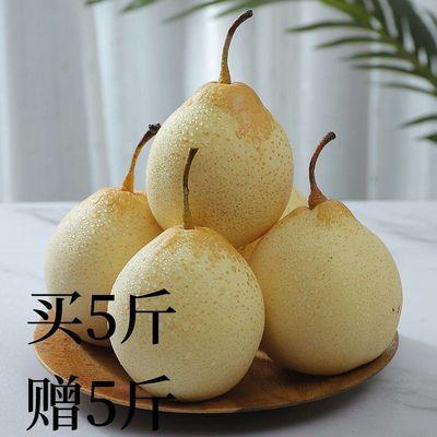 76128/正宗河北鸭梨大鸭子梨皮薄多汁雪梨母梨子新鲜白梨水晶梨应季水果