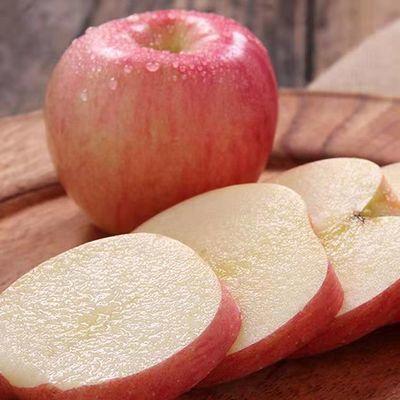 【爆款热卖】山西苹果冰糖心红富士丑孕妇吃的新鲜当季水果10斤装