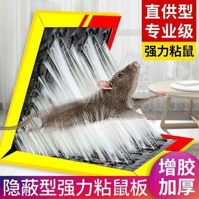 粘鼠板强力老鼠贴家用灭鼠板老鼠笼药驱鼠器老鼠夹沾胶捕老鼠神器