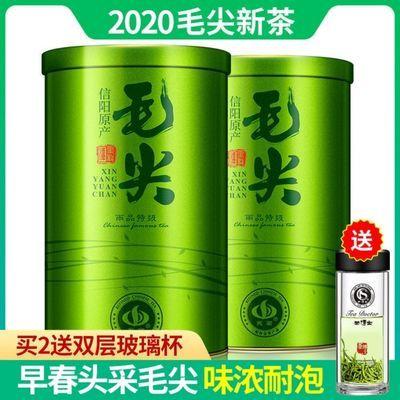 【买2送杯】信阳毛尖茶叶绿茶2020新茶明前特级炒青绿茶250g罐装