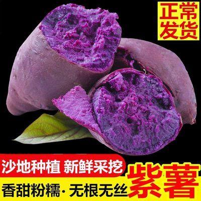 沂蒙山特产新鲜沙地大紫薯地瓜农家自种紫心大紫番薯红薯山芋果蔬