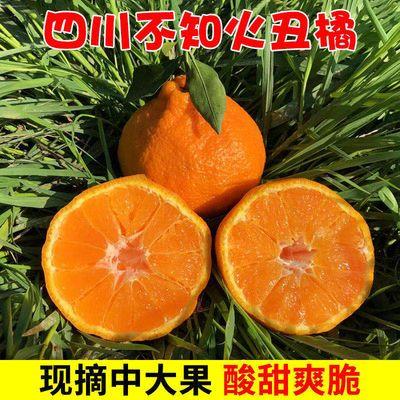 四川丑橘不知火丑柑丑哭橘子丑八怪新鲜包邮桔子水果非春见耙耙柑