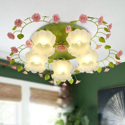 客厅灯田园大气家用卧室灯餐厅led吸顶灯圆形儿童创意少女吸顶灯