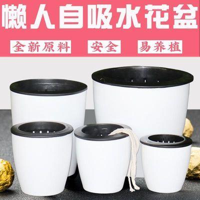 懒人花盆自动吸水绿萝用懒人盆清仓特价吊兰水培自吸盆塑料吸水盆
