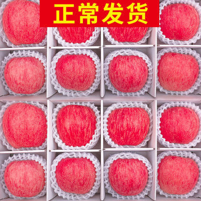 陕西红富士精品苹果新鲜水果5/10斤果径70-90mm现摘脆甜非冰糖心