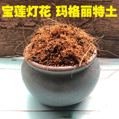 宝莲灯花专用土玛格丽特土盆栽营养土家用酸性泥碳土绿植种植肥料