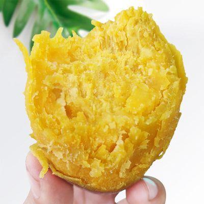 正宗板栗红薯农家番薯地瓜蜜薯 新鲜黄心红薯 10斤中薯大薯 粉糯