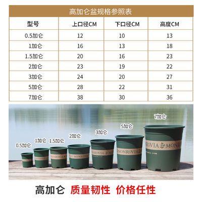 特价清仓 经典加仑盆 树脂塑料花盆 阳台种花种菜月季盆 花盆