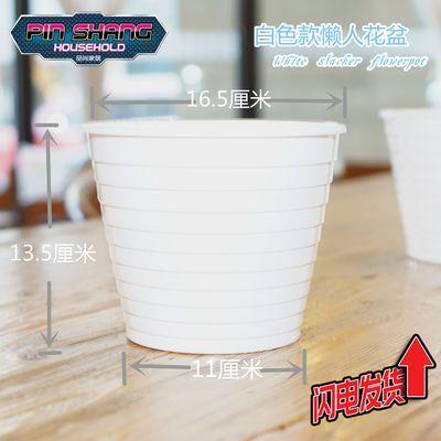绿萝水培懒人花盆塑料自动吸水植物包邮室内客厅盆栽透明不漏水