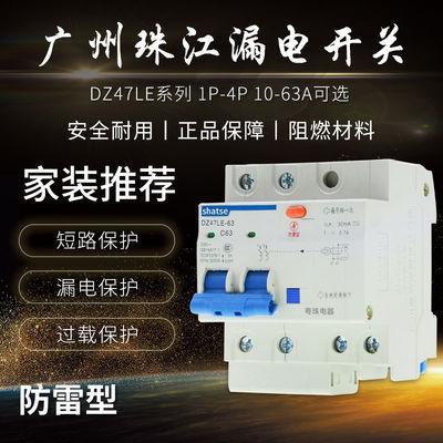 广州珠江漏电保护器1P2P63A32a断路器带空气开关DZ47家用电闸漏保