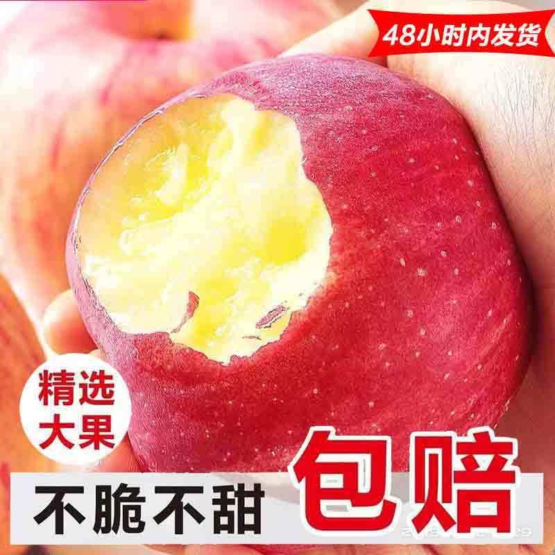 超低价水果苹果新鲜当季脆甜红富士冰糖心5/10斤丑嘎啦整箱批发价