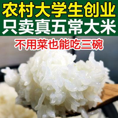 正宗东北五常稻花香大米10斤5kg黑龙江农家特级粳米2019新米包邮