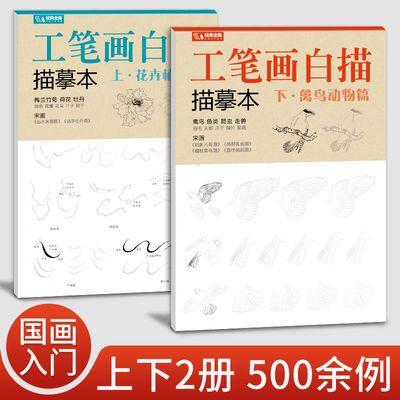 经典全集 工笔画白描描摹本上下2册/基础训练篇+强化提高篇 花卉