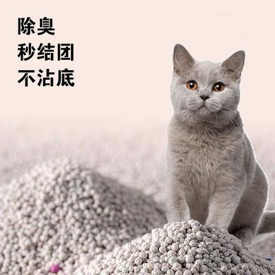 包邮猫砂20斤特价大颗粒不沾爪强除臭1秒结团新品能正常发货
