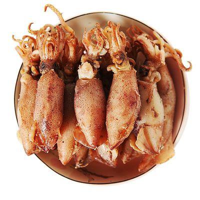 野生小海兔200/300/500g 海鲜乌贼劲道 海兔子营养丰富煲汤炒菜