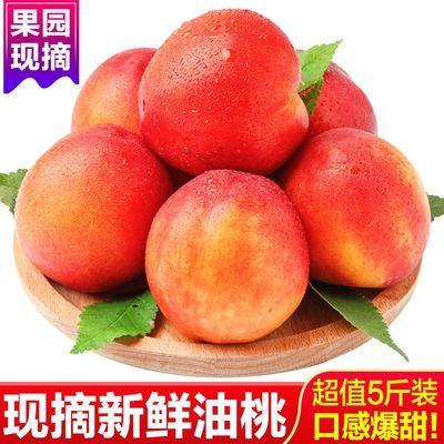 油桃新鲜油桃水果油桃5斤新鲜油桃黄心油桃蜜桃黄桃脆桃甜桃2/5斤