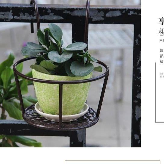 顺丰新品阳台栏杆花架护栏挂式花盆架悬挂吊篮绿萝客厅窗户花架子