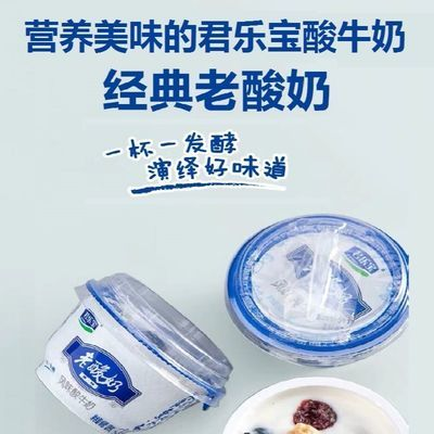 君乐宝老酸奶整箱批发139g12杯经典风味益生菌发酵乳【工厂直发】
