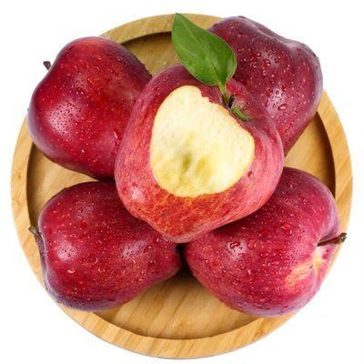 甘肃花牛苹果新季苹果粉面苹果可刮泥宝宝老人孕妇辅食湖北不发货