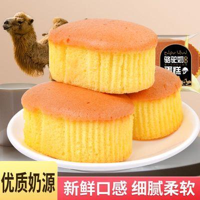 骆驼奶蛋糕整箱营养早餐面包网红代餐蛋糕休闲食品好吃的小零食品