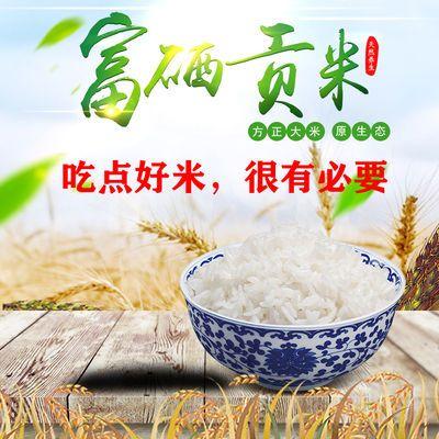 东北特产方正大米新米长粒香真空大米10斤黑龙江香米米砖德善牌