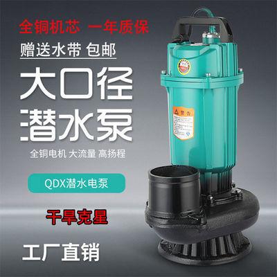 1寸2寸2.5寸3寸4寸6寸农用潜水泵抽水机大流量鱼塘灌溉水泵220v
