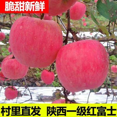 纸加膜陕西红富士苹果5斤包邮脆甜苹果新鲜苹果水果孕妇脆甜苹果