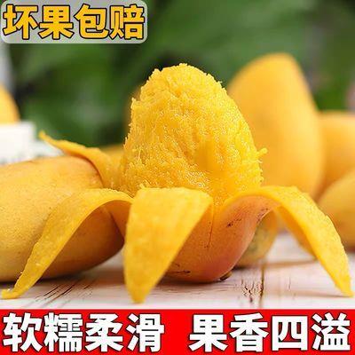 【精品】海南小台农芒果新鲜水果小台芒小芒果整箱批发3/5/10斤