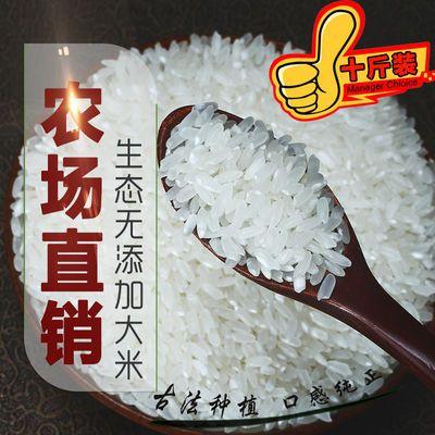 当季软香新米优质农家自产大米5斤长粒香贡米10斤不抛光丝苗米5kg