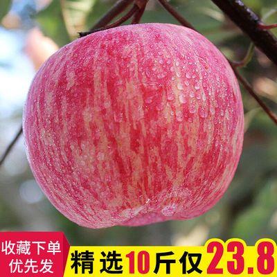 10斤装新鲜水果精品红富士苹果脆苹果丑苹果脆甜孕妇水果非冰糖心