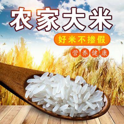 山泉水丝苗米20斤 广东煲仔饭专用长粒香米10kg 2019新大米油粘米