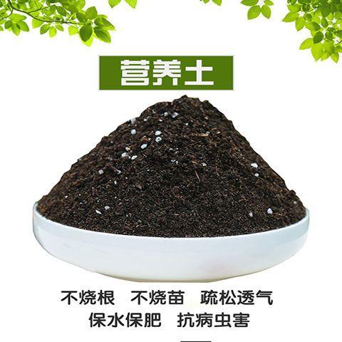 营养土通用种菜土花土养花种花种植蔬菜多肉土专用泥土肥料的细节图片4