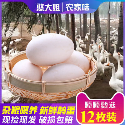 https://t00img.yangkeduo.com/goods/images/2020-03-29/e088c1a5e823cc874101321331d60ab5.jpeg
