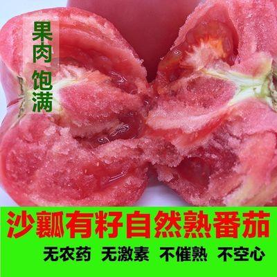 山东普罗旺斯生吃西红柿新鲜沙瓤自然熟水果番茄粉柿子5斤3斤有机